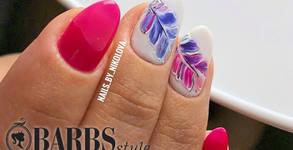 Barbs Style