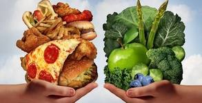 Вега тест на 240 храни