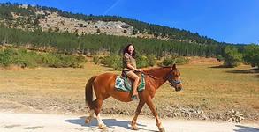 Конна езда в Родопите! 45 минути урок с инструктор - в с. Триград или с. Ягодина