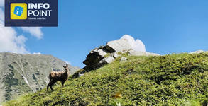 Екскурзия до Банско и връх Вихрен през Август! Нощувка със закуска, плюс транспорт