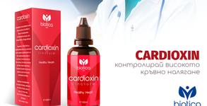 За здрава сърдечно-съдова система! Тинктура Кардиоксин - извлек от гинко билоба и арония