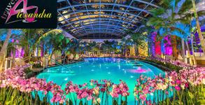 Еднодневна екскурзия до Букурещ, с посещение на Парк център Therme за тропически релакс - на 5 или 12 Май