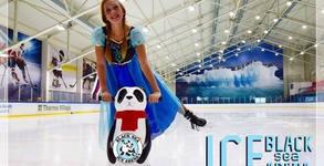 Black Sea Ice Arena