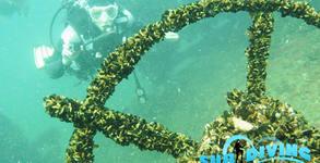 Тридневен водолазен курс със спускане до потънал кораб край Созопол