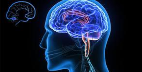 Преглед при невролог или изследване с електроенцефалограф