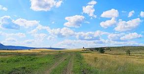 Конна езда край Шумен - урок или разходка сред природата