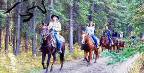 Забавление за двама край Казанлък! 1 учебен час конна езда на открито, с инструктор