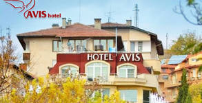 Хотел Avis***