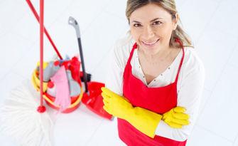 Машинно пране на до 6 седящи места мека мебел или основно почистване на дом или офис до 100кв.м, от Вип Клийнинг