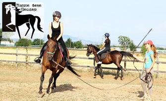 30-минутен урок по езда, от Конна база Ласкар - на 10 минути от центъра на София