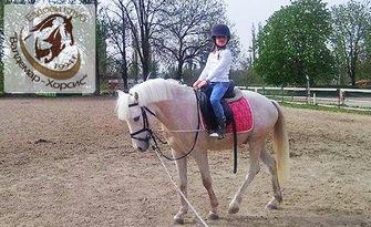 30-минутен урок по конна езда с треньор - за начинаещи или напреднали, с опция на закрито, от Ездови клуб Валдемар-Хорсис