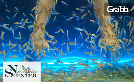 Fish SPA терапия на ходила с рибки Garra Rufa - 15 или 30 минути