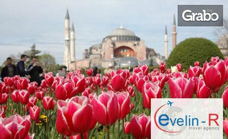 За Фестивала на Лалето до Истанбул! Нощувка със закуска, плюс транспорт, от Evelin R