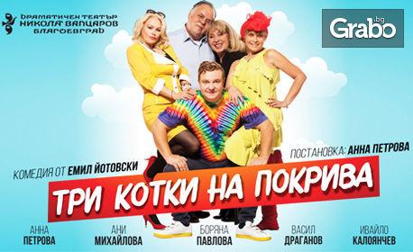 """Хитовата комедия """"Три котки на покрива"""" на 1 Февруари"""