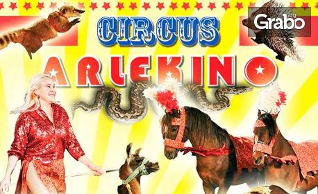 Вход за спектакъл на Цирк Арлекино с 40 животни - от 9 до 19 Ноември