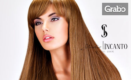 Боядисване на коса с боя от салона, плюс подстригване, терапия за запечатване на цвета, ампула и ежедневна прическа