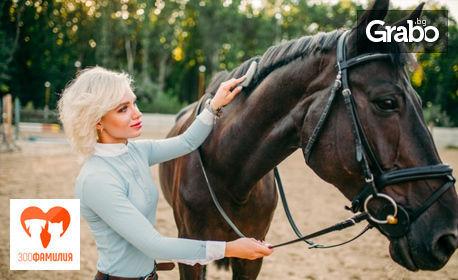 Урок по конна езда с инструктор по метода Natural Horsemanship, плюс стрелба с лък