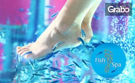Пилинг на стъпала с рибките Garra Rufa