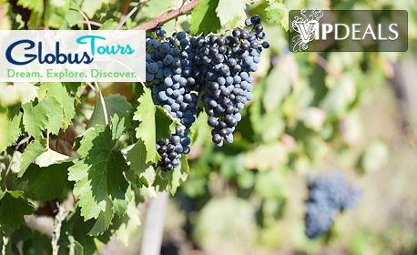 Винен тур! Екскурзия до Първомай, Пловдив и Перущица с нощувка със закуска, плюс транспорт и посещение на 2 винарни