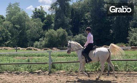 За любителите на природата и приключенията! Един час конна езда или урок по езда