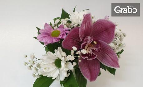 За Празника на жената! Аранжировка от червена роза, орхидея или лалета в керамична кашпа по избор