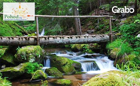 изображение за оферта Еднодневна екскурзия до Смолян и Смолянските водопади, от Поход