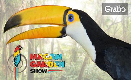 Вход за изложба на екзотични папагали в Paradise Mall