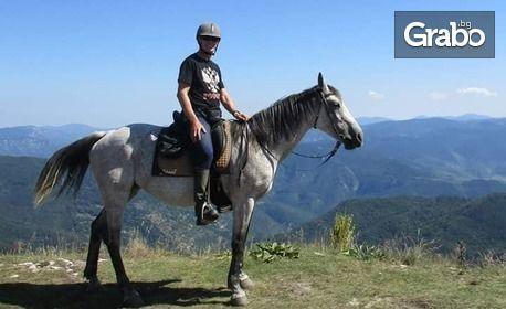 Забавление в Родопите, край Пловдив! 2 часа разходка с кон за начинаещи или напреднали, с квалифициран инструктор