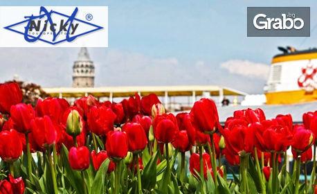 Първа пролет в Истанбул! 4-дневна екскурзия с 2 нощувки със закуски, плюс транспорт и панорамна обиколка