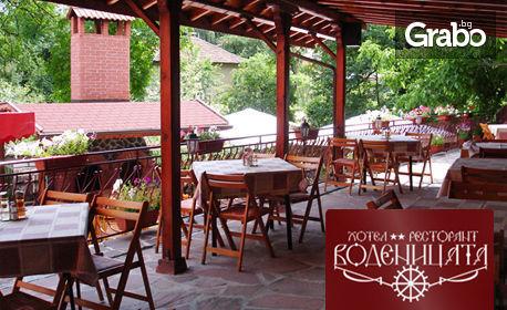 Лятна почивка в Берковица! 2 или 3 нощувки за двама