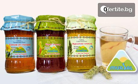 Вкус от Родопите за вкъщи! Консервиран боб, ябълков оцет, сладка, компоти или мармалад