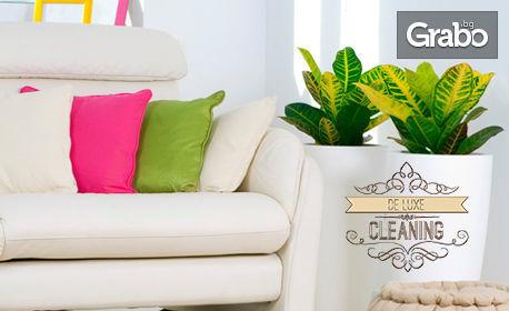 Професионално почистване на дом до 100кв.м
