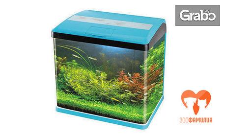 Напълно оборудван аквариум, плюс 4 рибки по избор