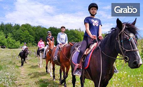 Разходка с кон или обучение по езда, плюс пикник край Боровец - за до двама възрастни с 2 деца
