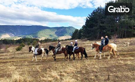 Конна езда Аспарух: 33% отстъпка