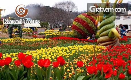 За Фестивала на лалето в Истанбул! 2 нощувки със закуски в Хотел Golden Tulip Istanbul Bayrampasa 5*, плюс басейн и сауна