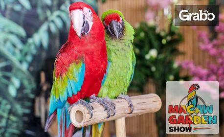 Вход за изложба на екзотични папагали в Мол Марково Тепе