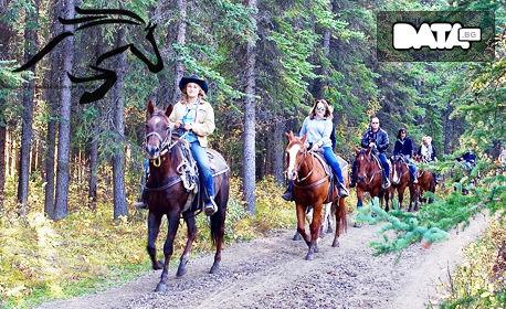 Конна езда в Долината на тракийските царе! Разходка или обучение за до петима, плюс фотозаснемане