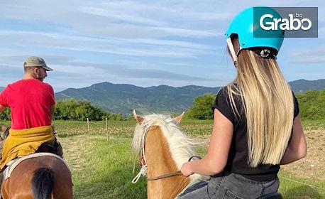 Разходка с кон за начинаещи и напреднали ездачи край село Хвойна