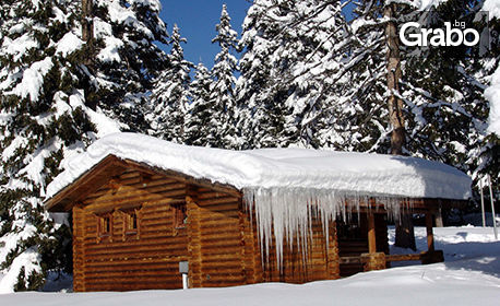 През зимата с компанията в Боровец! 3 или 5 нощувки във вила за до четирима