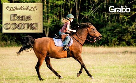 30 минути урок по езда за напреднали или начинаещи в Конна база Хан Аспарух, с опция на закрито