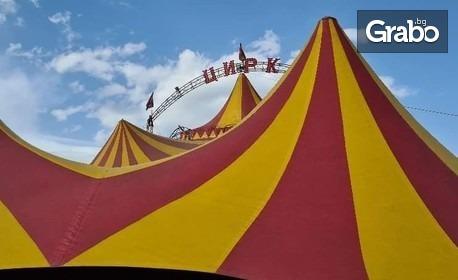 Магия в цирка! Вход за спектакъл на Цирк Колозеум и Quick Hands - на 9 Октомври