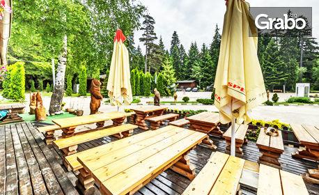 Лятна или есенна почивка в Боровец! Нощувка за петима във вила