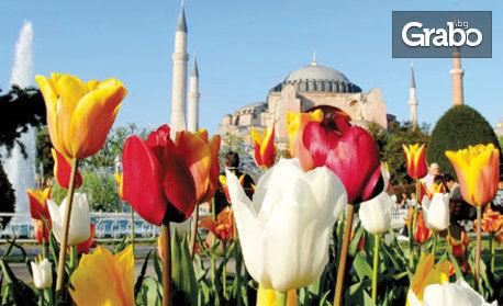 Посети Истанбул за 3 Март! Екскурзия с 2 или 3 нощувки със закуски, плюс транспорт