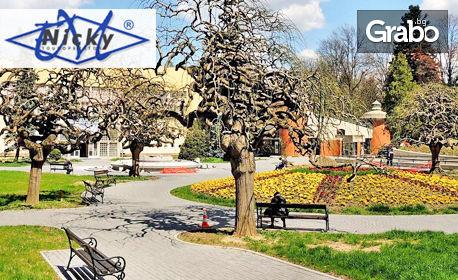 Уикенд в Сърбия! Нощувка със закуска и празнична вечеря във Върнячка баня, плюс обяд в Ниш и транспорт