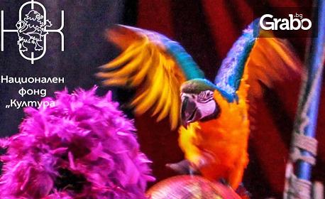 Вход за спектакъл на Цирк Феникс в Стара Загора - от 30 Септември до 5 Октомври