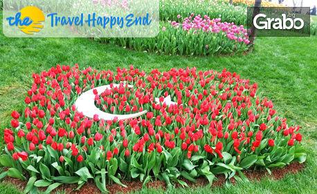 Опознай Истанбул! 2 нощувки със закуски в Хотел Buyuk Sahinler 4*, плюс транспорт и посещение на Одрин, от Travel Happy End