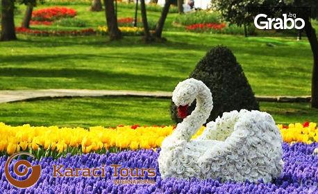 Екскурзия до Истанбул! 2 нощувки със закуски в хотел 5*, плюс транспорт и възможност за Фестивала на лалето