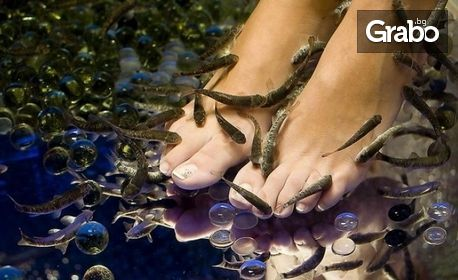 Fish SPA процедура на крачета, плюс оформяне на нокти и лакиране