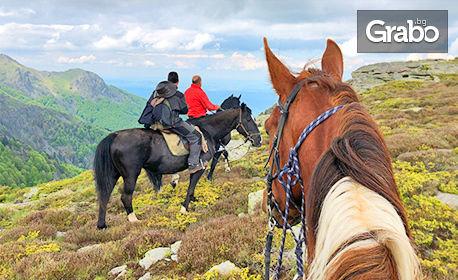 Приключение край Своге! 90 минути преход с кон в Стара планина - с инструктор и екипировка